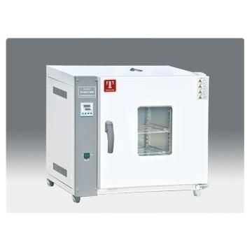天津泰斯特101型鼓风干燥箱101-0A